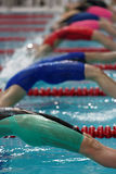 Start of women backstroke swimming competition during Salnikov Cup Royalty Free Stock Photography