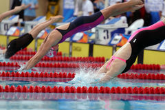 Start of women breaststroke swimming competition during Salnikov Cup Stock Images