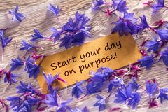 Start your day on purpose. In looking memo on white wood with beautiful blue flowers around stock photo