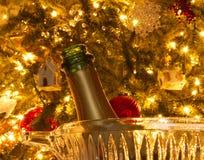 Starten av en romantisk afton med Champagne vid julgranen royaltyfri bild
