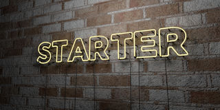 STARTER - Glowing Neon Sign on stonework wall - 3D rendered royalty free stock illustration. Can be used for online banner ads and direct mailers Stock Photo