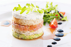 Starter with salmon. Tartare and salad Stock Photos