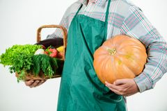 Starting day with healthy food. seasonal vitamin food. Useful fruit and vegetable. man farmer. harvest festival. man. Chef with rich autumn crop. organic and stock photos