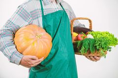 Starting day with healthy food. seasonal vitamin food. Useful fruit and vegetable. man farmer. harvest festival. man. Chef with rich autumn crop. organic and stock images