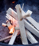 Starting a fire. Starting a camp fire with kindling stock photo