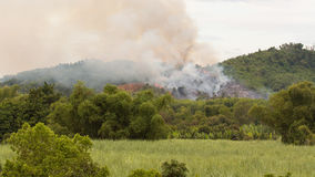 Starting forrest fire with lots of smoke Royalty Free Stock Images