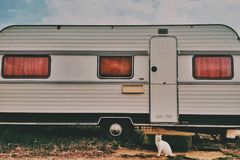 Cat in front of camper van on a sunny day stock photos