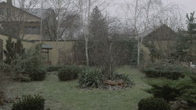 Starting to snow - snow falling in the back yard - 4K. Starting to snow - snow falling in the back yard 4K stock footage