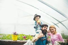 Startproduktion produktion för affärsstart startproduktionbegrepp startproduktion av den lyckliga familjen in arkivfoto