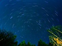 Startrail夜空森林剪影 库存照片