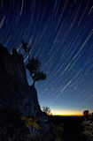 Startrail Stock Images