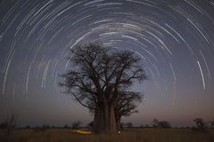 Startrail at Baines campsite. In Botswana Stock Images