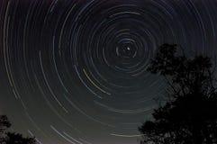 Startrail mit Baumschattenbild nachts Stockfotos