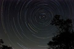 Startrail with tree silhouette at night Stock Photos