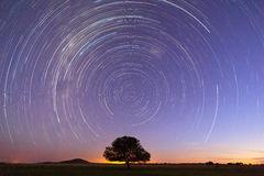 Startrails at blue hour Royalty Free Stock Photography