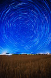 Startrails over a wheat field Royalty Free Stock Photo