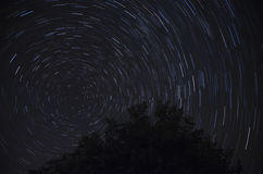 Startrails with Polaris in Italy Stock Photos