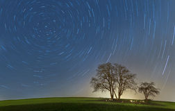 Startrails with trees Stock Photo
