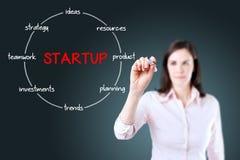 Startup runt strukturdiagram. Ung affärskvinna som rymmer en markör och dra nyckel- beståndsdelar för att starta en ny affär. Royaltyfri Bild