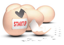 Startup utvecklingsbegrepp Arkivbild