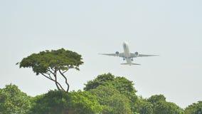 Startvliegtuigen op de achtergrond van de wildernis en de bomen in Indonesië stock videobeelden