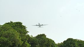 Startvliegtuigen op de achtergrond van de wildernis en de bomen in Indonesië stock video