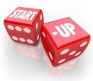Startwürfel-Rollen-Möglichkeit, die zukünftiges neues Geschäft wettet Lizenzfreie Stockfotos