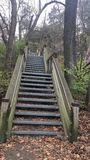Starved Rock Stairs Challenge Stock Photos