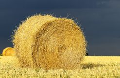 Straw balls Royalty Free Stock Images