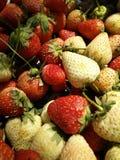 Starwberry Lizenzfreies Stockbild