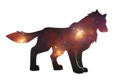 Starwolf Fotografía de archivo