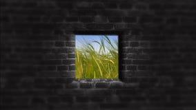 stary ściana okien Za ścianą Jaskrawa przyszłość Fotografia Stock
