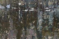 Stary ściana więcej liszaj obraz royalty free