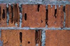 Stary ściana z cegieł horyzontalny Fotografia Royalty Free