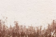 Stary ścienny plamy tło Obraz Royalty Free