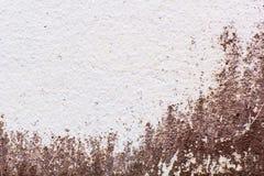 Stary ścienny plamy tło Zdjęcia Stock