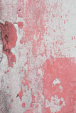 Stary ścienny tekstury grunge tła, menchii i bielu grunge backg, Fotografia Stock
