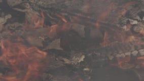 Stary śmieciarski usyp pali zbiory wideo