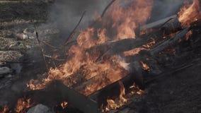 Stary śmieciarski usyp pali zbiory