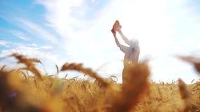 Stary średniorolny mężczyzna sylwetki piekarz trzyma złotego bochenek w dojrzałym pszenicznym polu i chleb przeciw niebieskiemu n zbiory