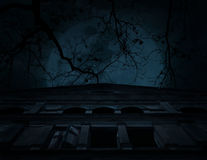 Stary antyczny kasztel z nieżywym drzewem nad księżyc i chmurnym niebem, Spoo Zdjęcie Royalty Free