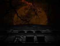 Stary antyczny kasztel z nieżywym drzewem nad księżyc i chmurnym niebem, Spoo Zdjęcia Royalty Free