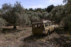 Stary będący ubranym ciężarowy Landrover opuszczał behind w oliwnym gaju obraz stock