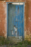 Stary błękitny drewniany drzwi na pomarańczowej ścianie w zaniechanym domu obraz royalty free