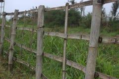 Stary bambusa ogrodzenie Zdjęcia Royalty Free