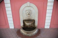 Stary Bauska urząd miasta Fontanna - lew głowa Zdjęcia Stock