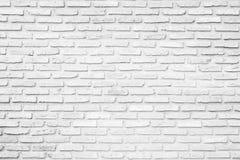 Stary biały ściana z cegieł tekstury projekt Opróżnia białego ceglanego tło dla prezentacj i sieć projekta Mnóstwo przestrzeń dla Obraz Royalty Free