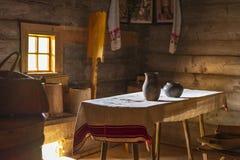 Stary Białoruski drewniany dom obrazy stock