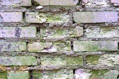 Stary Brickwork Ściana z cegieł Biała krzemian cegła Rozdrabnianie cegła od czasu do czasu zdjęcia royalty free
