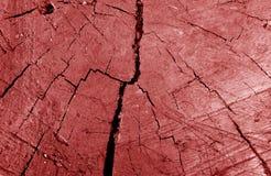 Stary brudny drzewa cięcie w w górę czerwonego brzmienia obrazy royalty free